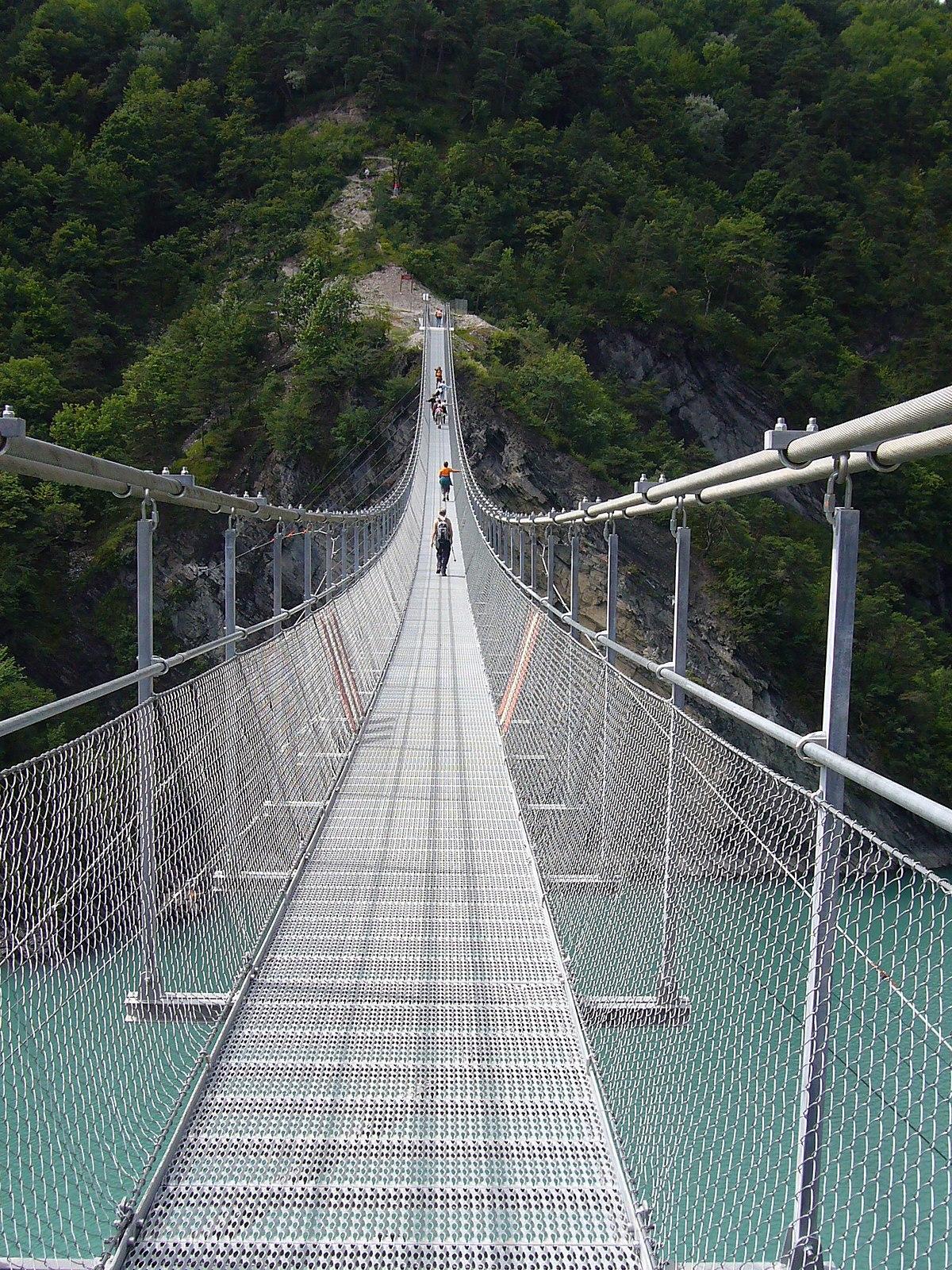 Fabriquer Un Petit Pont De Bois pont de singe — wikipédia