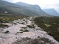 Path in Glen Dee - geograph.org.uk - 840887.jpg