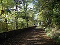 Path to Telford Bridge - geograph.org.uk - 1528037.jpg