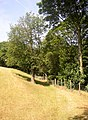 Path to Wood Fall, Shelf - geograph.org.uk - 209595.jpg