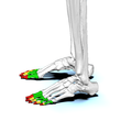 Phalanges of the foot02 lateral view.png