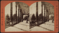 Piazza of Fort William Henry Hotel, by Conkey, G. W. (George W.), 1837-ca. 1900.png