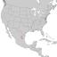 Picea martinezii range map 1.png