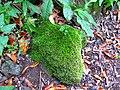 Piedra verde - panoramio.jpg