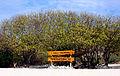 Pigeon Island National Park.JPG