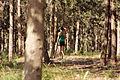 PikiWiki Israel 35548 In the Woods.JPG