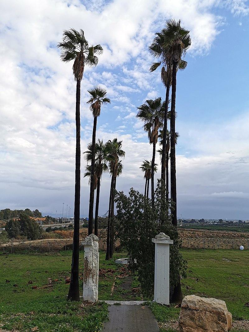 חוות שפון בנצר סירני