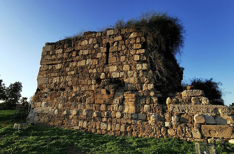 מצודת המישור באזור