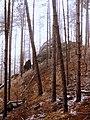 Pineta Monte Armelio - panoramio.jpg