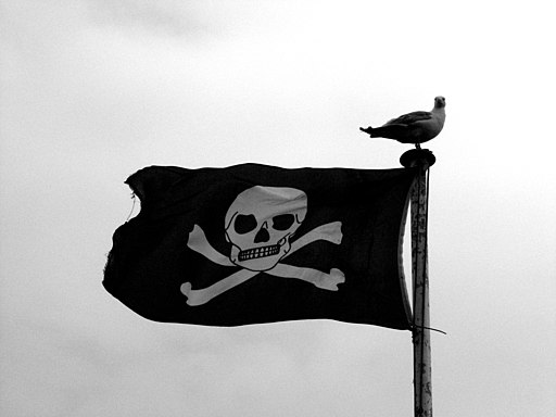 Pirate Flag (6084517123)