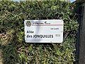 Plaque Allée Jonquilles - Villiers-sur-Marne (FR94) - 2021-05-07 - 2.jpg