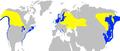 Podiceps grisegena -range map-2c.png