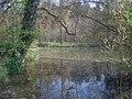 Pond near Park House - 2 - geograph.org.uk - 1275791.jpg