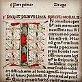 Postilla super evangelia et epistolas.jpg