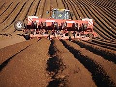 Potato Planting Near Chapel Wood (geograph 2967576).jpg
