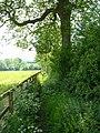 Public Footpath - geograph.org.uk - 812840.jpg