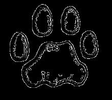 Black Dog Paw