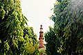 Qtub Minar in the bush.jpg