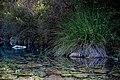 Río Molinos, Istán.jpg