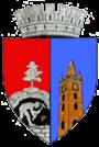 https://upload.wikimedia.org/wikipedia/commons/thumb/1/13/ROU_MM_Baia_Mare_CoA1.png/90px-ROU_MM_Baia_Mare_CoA1.png