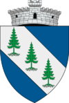 Coat of arms of Dorna-Arini