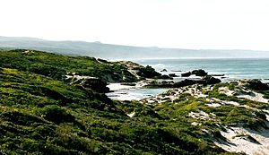 De Hoop Nature Reserve - Image: RSA De Hoop