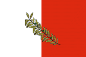 Local councils of Malta - Image: Rabat Malta flag