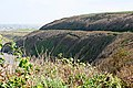 Railway Line and Coast Path - geograph.org.uk - 581210.jpg