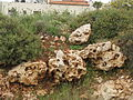 Ramallah, Palestine (5873405298).jpg