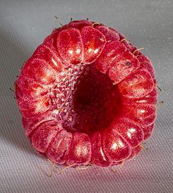 Raspberry interior.jpg