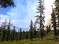 Reading fire 2012 - From Cluster Lakes Loop.jpg