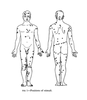 Referred itch - Wikipedia
