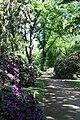 Rhododendronpark Bremen 20090513 123.JPG