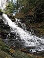 Ricketts Glen State Park F.L. Ricketts Falls 5.jpg