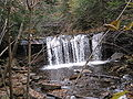 Ricketts Glen State Park Oneida Falls 3.jpg