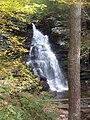 Ricketts Glen State Park Ozone Falls 1.jpg