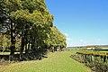 Rieux Seine-Maritime R03.jpg