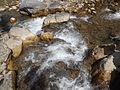 Rishikesh harikempty fallsdwar (397).JPG