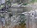 River Nairn near Craggie. - geograph.org.uk - 1252727.jpg