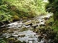 River Nant - geograph.org.uk - 200300.jpg