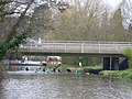 River Wey - geograph.org.uk - 725599.jpg