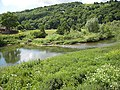 River Wye from Kerne Bridge - geograph.org.uk - 842635.jpg