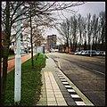 Road - panoramio (122).jpg