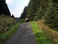Road from Rowantree Toll to Nick of the Balloch - geograph.org.uk - 263418.jpg