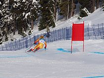 Robbie Dixon at the 2010 Winter Olympic downhill.jpg