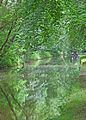 Rochdale Canal, near Sowerby Bridge (27888669766).jpg