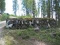 Rodbergsfortet - Bunker.jpg