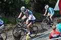 Ronde van Vlaanderen 2015 - Oude Kwaremont (16434617423).jpg