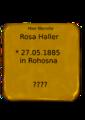 Rosa Haller.png