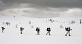 Royal Marine Reservists Training in Norway MOD 45156933.jpg